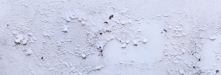 10 Common Defects Observed in Plastering