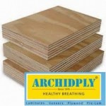 Archidply Commercial Plywood - 8mm