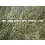 Bhandari Marble World's Rainforest Green