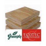 Green PLYWOOD - Ecotec MR(Thickness - 19mm)