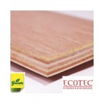 Green PLYWOOD - Ecotec BWR(Thickness - 4mm)