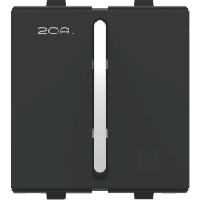 F-31 2 Way Switch - Silver Graphite