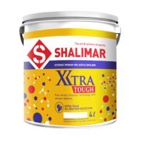 Xtra Tough 100 percentage Acrylic Exterior Emulsion - 20 Ltr