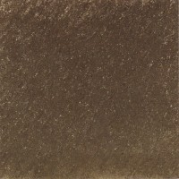 Glory Brown - 800 x 800 mm