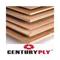 Century Bond 710 BWP Marine Plywood - 9mm