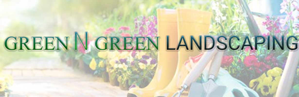 Green N Greens Landscaping