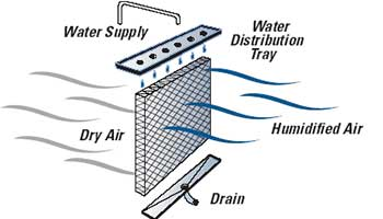 Humidifiers are used mostly in dry and tropical regions where the humidity content in the air is less
