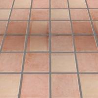 Clay or Ceramic Flooring