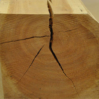 Cracks in timber