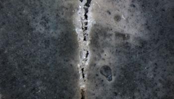Bacteria generating Limestone inside concrete