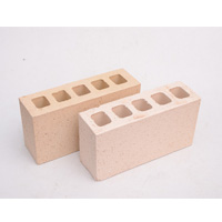 Hollow clay bricks example