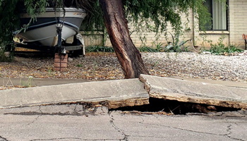 Example of Foundation Cracks caused by Trees